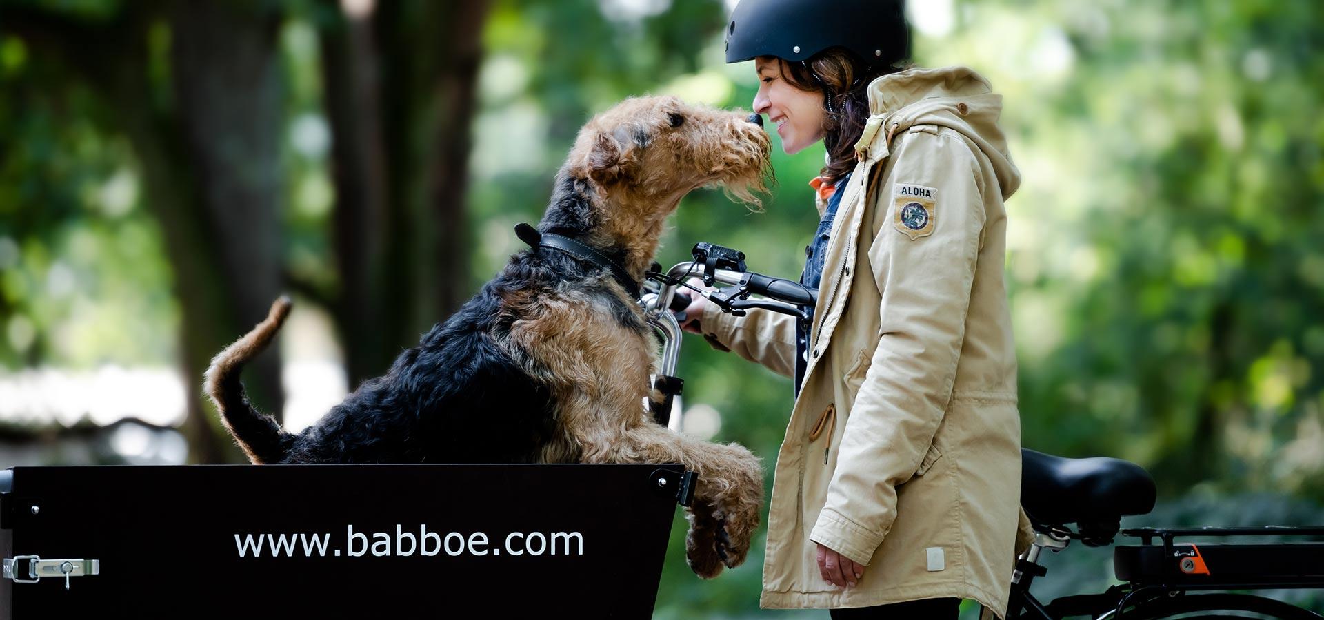Babboe Dog Hundeanhänger Fahrrad