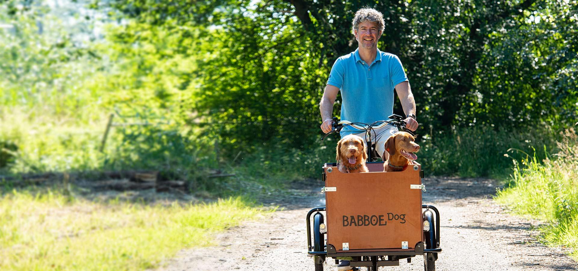 Babboe Dog Hunde-Lastenrad