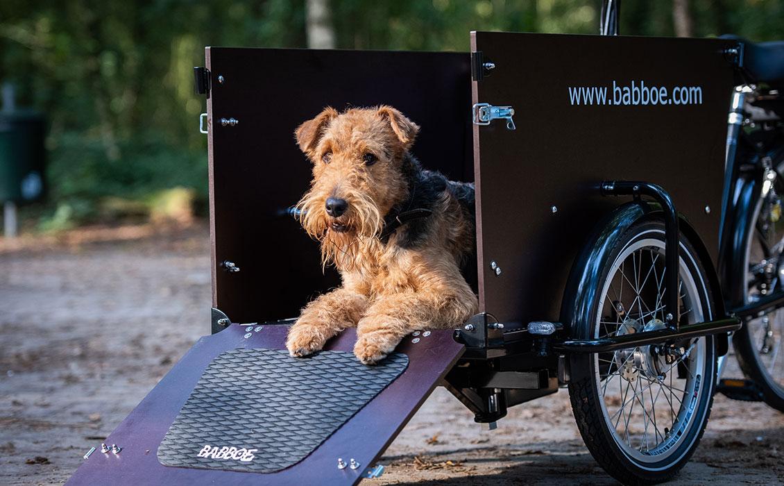 Hundeanhänger Fahrrad mit Hunderampe